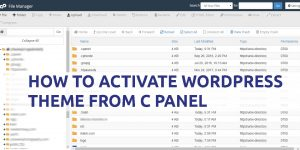 How to Activate WordPress Theme from Cpanel